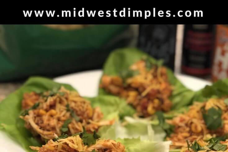 Quinoa Enchilada Lettuce Wraps